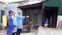 Nghệ An: Các địa phương chủ động hóa chất khử trùng, phòng dịch tả lợn châu Phi