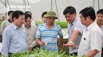 Kinh tế tập thể đóng góp gần 7% tổng sản phẩm trên địa bàn Nghệ An