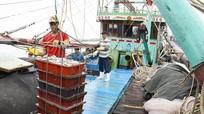 Nghệ An: Đánh bắt gần 29.000 tấn hải sản