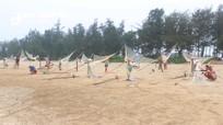 Đánh bắt ruốc biển, ngư dân Nghệ An thu tiền triệu mỗi ngày
