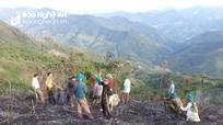 Xác minh nguyên nhân vụ cháy rừng ở huyện vùng cao Nghệ An