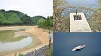 Nắng hạn cực điểm ở Nghệ An: Cá chết vì hồ cạn nước, lúa non cháy hàng loạt