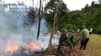 Hàng trăm người tham gia diễn tập thực binh chữa cháy rừng Pù Mát