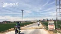 Quỳnh Lưu: Tái bùng phát dịch tả lợn châu Phi, chốt kiểm soát bị 'bỏ trống'