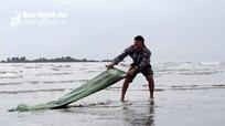 Ngư dân Nghệ An 'lọc' cát biển bắt ốc cườm thu tiền triệu mỗi ngày  