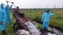 Cảnh báo nguy cơ bùng phát dịch tả lợn châu Phi tại các cụm bản biên giới