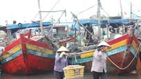Tàu thuyền Nghệ An cấp tập vào bờ tránh mưa bão