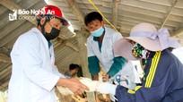 Nghệ An: Khẩn cấp tiêm phòng trên hàng chục nghìn gia cầm chống dịch cúm H5N6