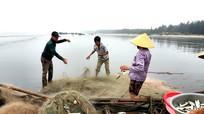 Ngư dân Nghệ An kéo lưới trúng mẻ cá rớp hiếm gặp