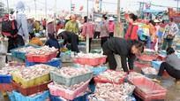 Ngư dân Nghệ An thu gần 680 tỷ đồng từ đánh bắt hải sản