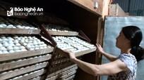 Nghệ An: Trứng vịt lộn khan hàng, giá cao kỷ lục