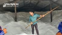 Giá rớt chạm đáy, nhiều kho muối ở Nghệ An ứ hàng