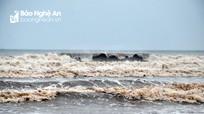Nghệ An dỡ lệnh cấm biển sau bão số 7