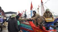 Ngư dân Nghệ An đón 'lộc biển' đầu năm mới