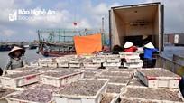 Nghệ An: Giá trị đánh bắt hải sản 5 tháng ước 1.507 tỷ đồng