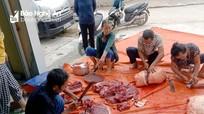 Người dân Yên Thành mổ lợn tạ để làm ruốc bông hỗ trợ vùng dịch Bắc Giang, Bắc Ninh