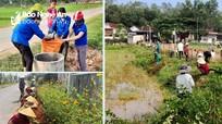 Đô Lương chú trọng tiêu chí môi trường trong xây dựng nông thôn mới