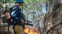 Cháy rừng thông tại xã Quỳnh Lập, thị xã Hoàng Mai