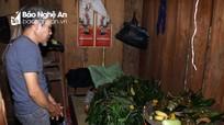 Xem cách người Thái Nghệ An gieo quẻ chọn mo làng