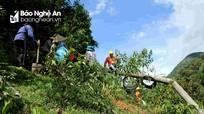 Tìm giải pháp hạn chế tình trạng mất điện ở huyện miền núi Quế Phong