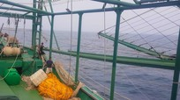 Ngư dân Nghệ An lắp cánh sắt vào tàu 4 sào để vươn khơi, bám biển