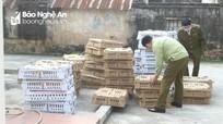 Nghệ An: Bắt vụ vận chuyển 7.000 con gia cầm có dấu hiệu bệnh