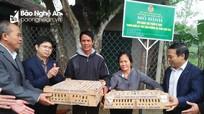 Hội Nông dân trao hơn 4.000 con gà giống cho Thanh Chương