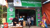 Thanh niên miền núi chung tay mở cửa hàng thực phẩm sạch