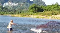 Con Cuông: 'Đa lợi ích' từ nghiêm cấm đánh cá trái quy định