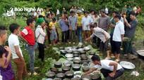Người Mông Nghệ An 'lên trời' ăn tiệc trong lễ cúng 'giàng'