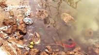 Sớm giải quyết tình trạng ô nhiễm môi trường ở xã nông thôn mới