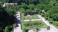 Chuyện về cây đa ở Khu Di tích lịch sử quốc gia đặc biệt Kim Liên