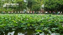 Liên kết chặt chẽ chương trình hợp tác giữa 2 địa phương Nghệ An - TP Hồ Chí Minh trong phát triển văn hóa - thể thao