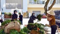 Người dân Đô Lương ủng hộ hơn 40 tấn rau cho vùng phong tỏa ở TP Vinh