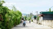 Nghệ An: Bình yên trở lại những vùng 'tâm dịch'