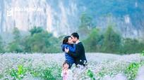 Vườn hoa dại Nghệ An hút khách ngày Tết