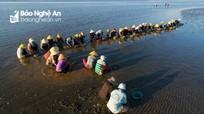 Nét tảo tần làng biển