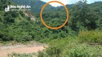 2 lao động Nghệ An thương vong khi đi khai thác gỗ ở nước bạn Lào