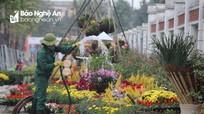 Rực rỡ đường hoa Xuân 2021 ở TP. Vinh