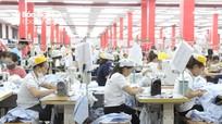 Liên đoàn Lao động tỉnh Nghệ An đẩy mạnh công tác phát triển đảng viên