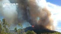Rừng thông ở Nam Đàn bùng phát cháy trở lại, uy hiếp cả nhà dân