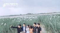 Phát hiện vùng lau giữa bãi nổi, nhiều bạn trẻ vượt sông Lam đến chụp ảnh