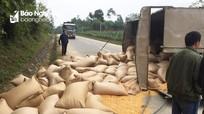 Ngô vương vãi khắp đường Hồ Chí Minh sau cú đâm giữa xe máy và ô tô tải