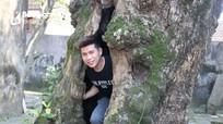 Độc đáo cây bàng rỗng ruột hàng trăm năm tuổi tại khu di tích ở Nghệ An