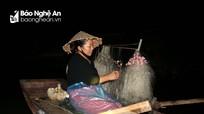 Người dân Nghệ An trắng đêm săn cá trên sông Lam