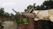 Người dân Thanh Chương khắc phục thiệt hại sau bão số 5