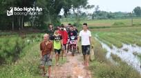 Người dân huyện lúa Nghệ An đi săn chuột đồng 'đặc sản' vui như hội
