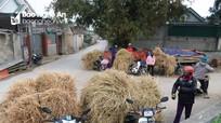 Độc đáo chợ rơm ngày Tết ở Nghệ An