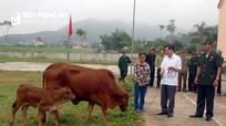 Bí thư Đảng ủy xã mua bò giống tặng hộ nghèo