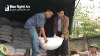 Phân bổ hàng trăm tấn gạo cho học sinh nghèo vùng đặc biệt khó khăn